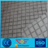 ガラス繊維GeogridかポリエステルGeogridまたはPP/PetのNon-Wovenファブリックが付いているプラスチックGeogridの合成物