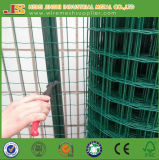China Factory Supply Dutch Mesh, Holland Wire Mesh