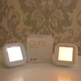 Dois lâmpada Huggable do bebê das cores OLED