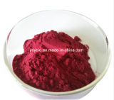 Reiche Aminosäuren natürliche Acai Beeren-Auszug-Flavon 10%; 4:1 ~10: 1