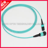 40Gig 12 Fibers high Density MTP OM3 Cable