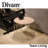 Divany Modern Stainless Steel Marble Top Coffee Table