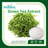 Alimentation en usine Extrait naturel pur de thé vert en poudre EGCG 50%