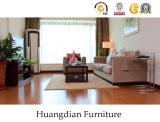 整備しなさいアパートの家具の製造者の直売の価格(HD836)を