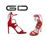 Hot Sale popular de alta calidad de color de juego de bajo corte abierto dedo del pie sandalias de estilete para las damas