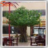Ficus в реальном маштабе времени новой конструкции декоративный напольный искусственний засаживает вал