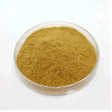Chlorogenic 산 25% 꿀은 꽃 추출 Lonicera Japonica 추출을 젖을 먹인다