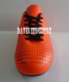 A fábrica pequena de MOQ oferecida o futebol novo de venda quente do estilo do projeto calça sapatas dos esportes do relvado do futebol dos carregadores com alta qualidade e bom preço