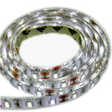 24V LED SMD5630 tira flexible (60 LEDs/M).