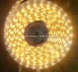 Tira flexible amarilla los 4.8W/M de 590-595nm LED3528