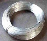 Fil galvanisé / fil de reliure Gi / Hot DIP Galvanized Iron Wire