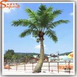 Kokosnuss-Palmen-Pflanzenbaum des heißen Verkaufs-2015 künstlicher dekorativer (CO-06)