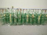 Plastiktomatenpflanze-Stützrahmen mit unterschiedlicher Größe