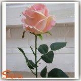 人工絹のローズのベストセラーの装飾的な花