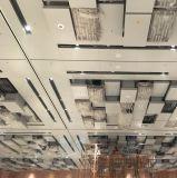 Techo de aluminio del diseño especial para la decoración interior