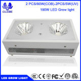 Glebe LED Plant Grow Light 120W Lâmpada de Espectro Completo com Anti-Fire Casing para Greenhouse Hydroponic Plant Growth
