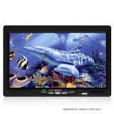 Appareil-photo sous-marin de pêche de vente grande avec DVR