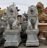 Ornement de jardin statue en marbre pierre Sculpture Animal Lion