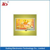 7.0 ``TFT LCD Punkte der Bildschirmanzeige-1024*600 mit Note mit RGB-Schnittstelle