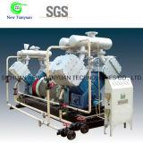 El fluoruro de hidrógeno o el otro compresor de pistón industrial del gas
