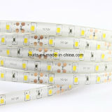 Color blanco 60LED / M SMD2835 flexible Franja de luz LED