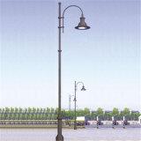 30W装飾的なLED公園の庭街灯柱