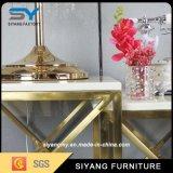 Acero inoxidable de lujo de oro Pintura pequeña mesa de centro