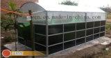 Pianta portatile del biogas dell'Assemblea del fornitore della Cina mini