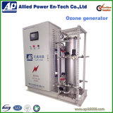 물과 폐기 가스 처리를 위한 산업 발전기 오존