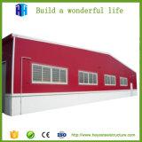 Tettoia doppia del magazzino della struttura d'acciaio di disegno della costruzione del magazzino del piano