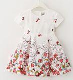 Vestido colorido do vestido do bebê na venda de Hote