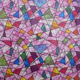 Leer van de Schoen van de Zak Faux van het Ontwerp het Kleurrijke Synthetische Pu van de manier Kunstmatige