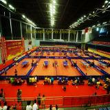 Indoor Sports PVC des rouleaux de tapis pour le Tennis de table fabriqués en Chine