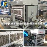 Moldeado rotatorio automático de la pulpa del producto de la bandeja del huevo que hace el fabricante Suráfrica de la máquina