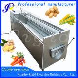 Peladora de la maquinaria del cepillo que se lava (patata, zanahoria, cebolla, jengibre)