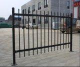 Ограждать загородки/ковки чугуна пикетчика гарнизона черного порошка Coated стальной