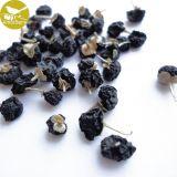 Bes Goji van de Voeding van de Levering van de Fabriek van de Bes Goji van Qinghai van de Bes Goji van de Levering van de fabriek de Droge Zwarte Wilde Zwarte Natuurlijke Wilde Zwarte