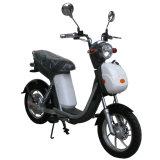 [ديسك برك] درّاجة كهربائيّة [500ويث800و] مع دواسة [موبد]