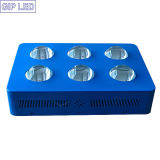 8 de Hydrocultuur LED Grow Light van Indoor Plants 800W COB van de band
