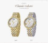 숙녀 꽃 다이아몬드 스테인리스 시계 방수를 위한 2018년 AAA 호화스러운 Belbi 팔찌 손목 시계 상표