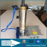 Pompe à eau submersible à puits profond solaire avec batterie