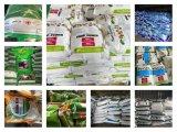 La poudre d'acide aminé 80 % d'origine végétale
