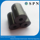Magnete di anello di ceramica del motore del ferrito a magnete permanente