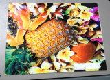 Cj-R2513UV 2.5*1,3 m efeito 3D de alta resolução vidro, cerâmica de mesa da máquina de impressão da impressora LED UV
