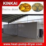 Il cerchio dell'aria calda ha disidratato la macchina della bacca, forno secco della frutta