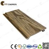 중국 공급자 합성 장식적인 옥외 벽면
