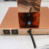 2PCS USBが付いているヨーロッパのホテルの銅のベッドサイド・テーブルランプ