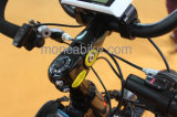 Fahrrad-Stadt-Roller Shimano heißer des Berg2017 elektrischer Fahrrad-fetter Gummireifen grosser E-Fahrrad Al-Legierungs-Rahmen-E