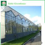 A fachada do prédio isolado oco vidro temperado com efeito de estufa