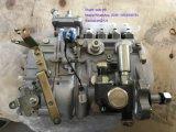 Sdlg 굴착기 로더 B877를 위해 Sdlg 주입 펌프 1000185678/4110002925025